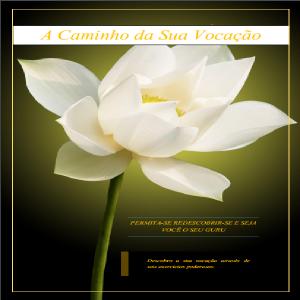 Baixar A caminho da sua vocação: permita-se redescobrir-se e seja você o seu guru pdf, epub, ebook