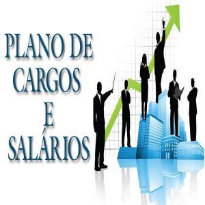 Baixar PLANO DE CARGOS E SALÁRIOS pdf, epub, eBook