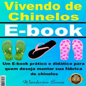 Baixar E-book Vivendo de Chinelos pdf, epub, eBook
