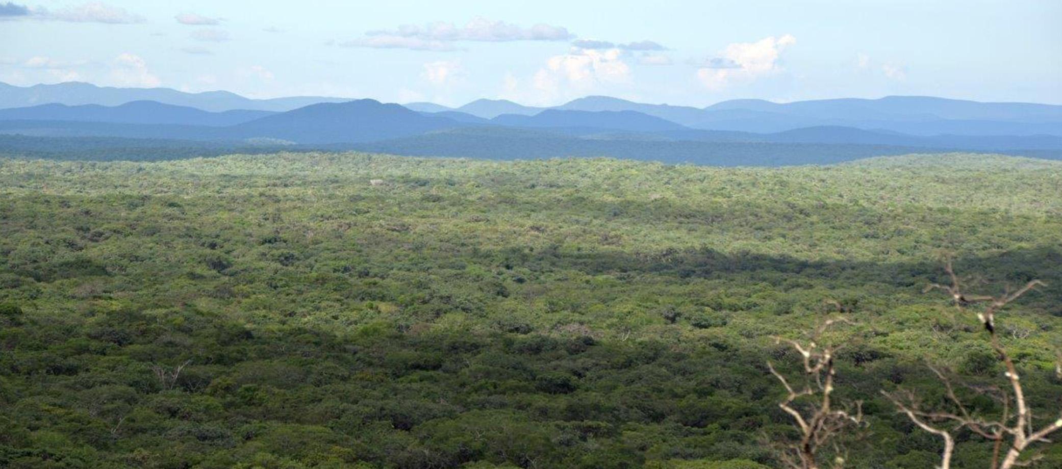 Zambia 2082x920 3