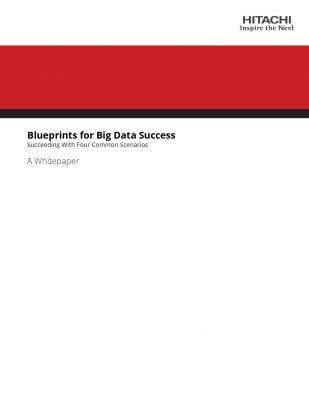 Blueprints for Big Data Success