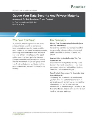 Forrester Report: Gauge Your Data Privacy  and  Security Maturity