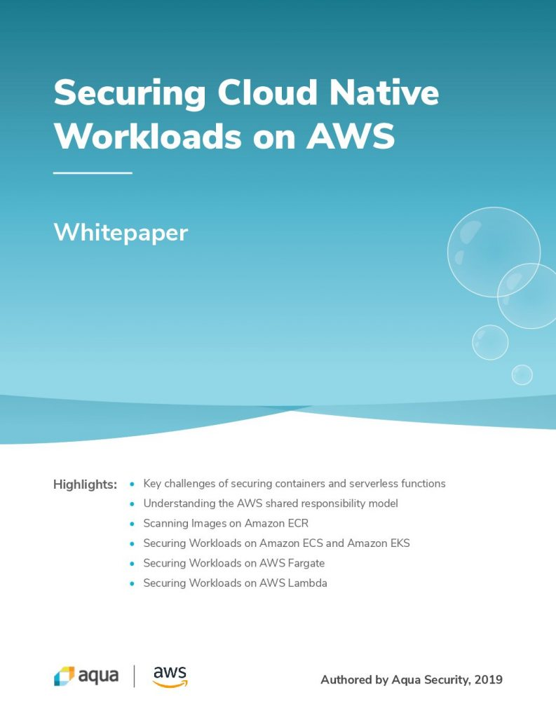 Securing Cloud on Workloads Native AWS