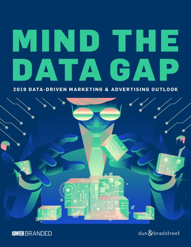 Mind the Data Gap: 2019 Data-Driven Marketing  and  Advertising Outlook