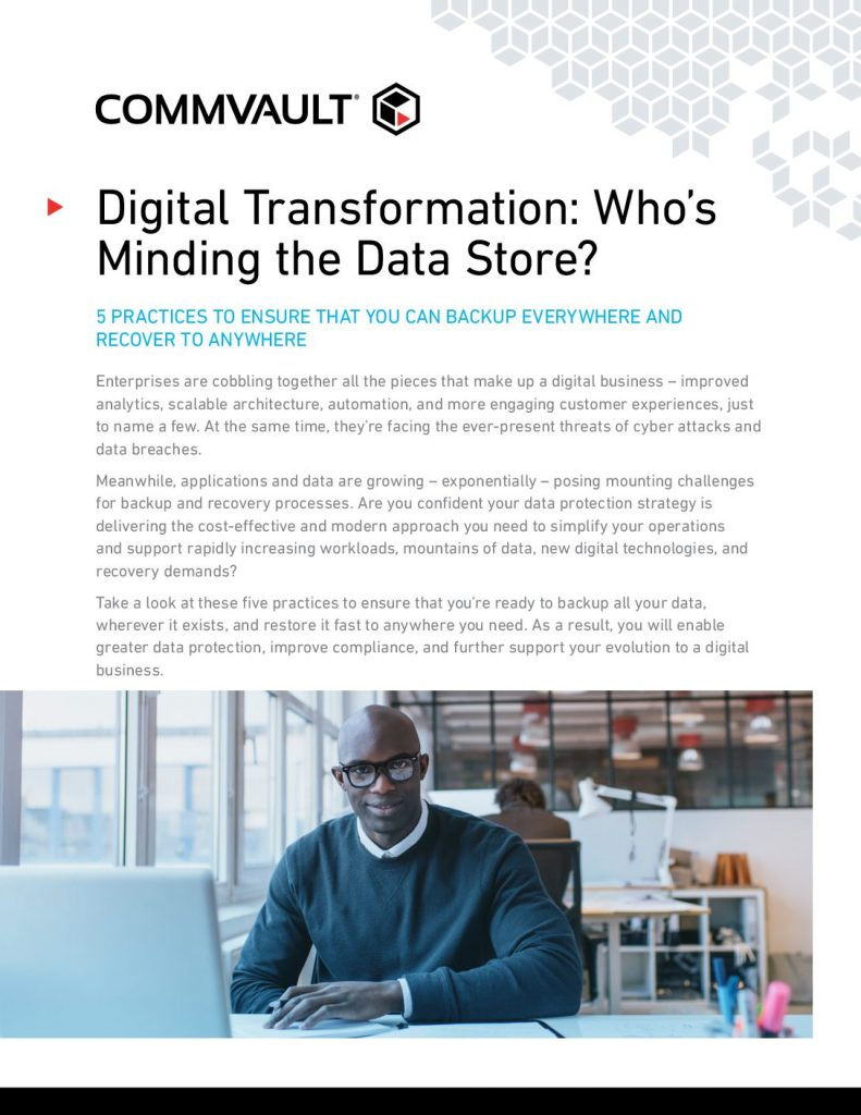 Recovery Readiness: Digital-Transformation Whos Minding The Data Store