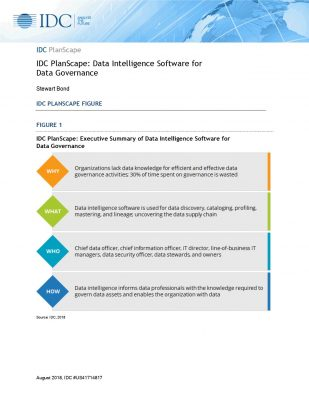 IDC PlanScape: Data Intelligence Software for Data Governance