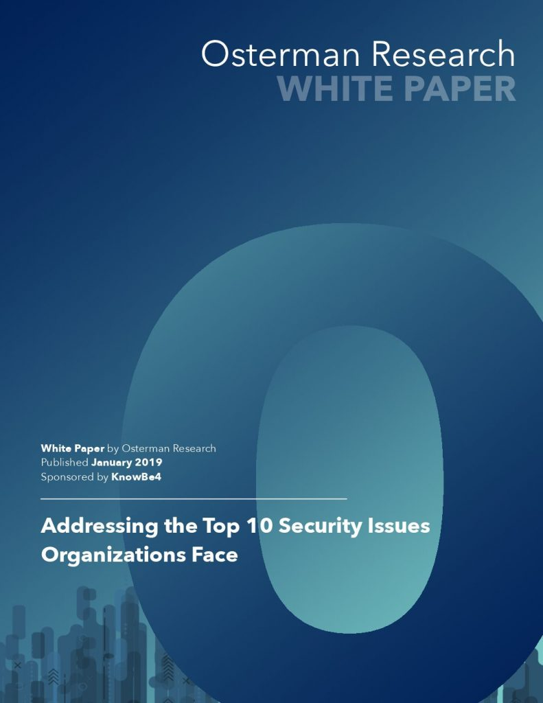 Addressing the Top 10 Security Issues Organizations Face