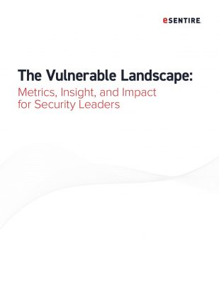 The Vulnerable Landscape: Metrics, Insights and Impact for Security Leaders