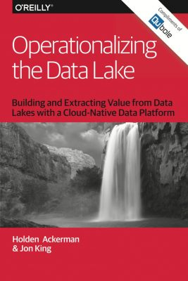 Operationalizing the Data Lake Building and Extracting Value from Data Lakes within a Cloud Platform