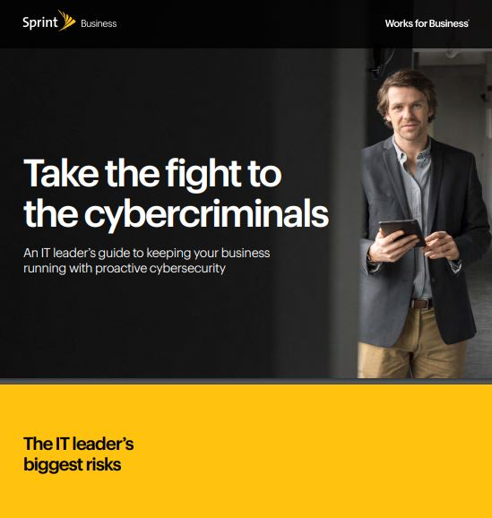 Take The Fight To The Cybercriminals