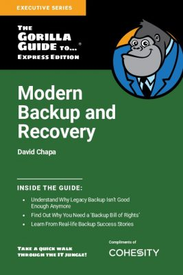 Gorilla Guide to Modern Backup  and  Recovery