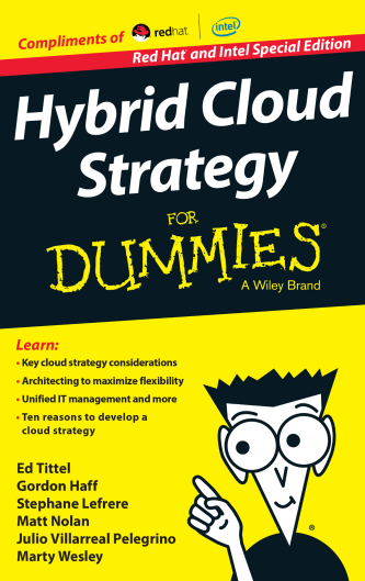 Hybrid Cloud Strategy for Dummies ebook