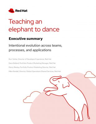 Teach Elephant to Dance: Exec Summary
