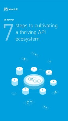 7-steps to cultivate a thriving API ecosystem