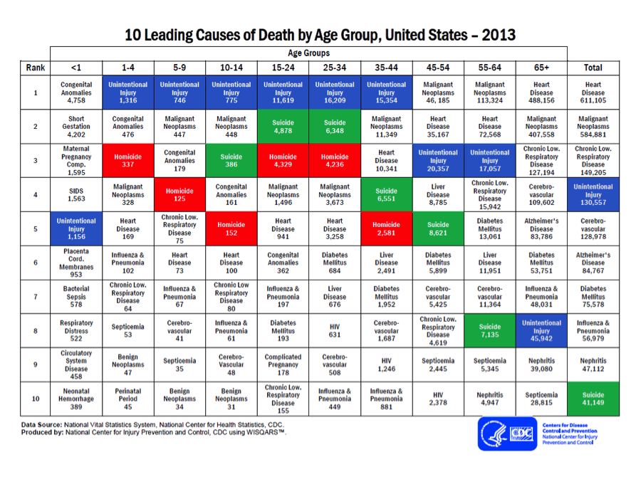 10 Leading Causes of Death by Age Group