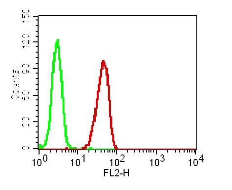 Monoclonal antibody to GPR44 (Clone: ABM2H76)