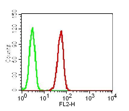 Monoclonal antibody to GPR44 (Clone: ABM2C77)