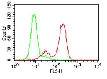 Monoclonal antibody to DR4 (Clone: ABM1B11 )