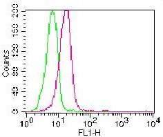 Monoclonal Antibody to Caspase-3 (Pro and Active) (Clone: ABM1C12) FITC Conjugated