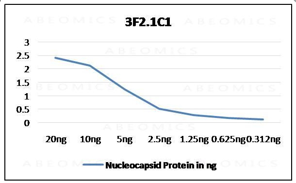 Monoclonal Antibody to SARS-CoV-2 Nucleocapsid  (Clone: ABM3F2.1C1)