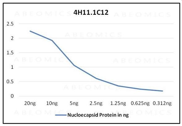 Monoclonal Antibody to SARS-CoV-2 nucleocapsid Protein (Clone: ABM4H11.1C12)