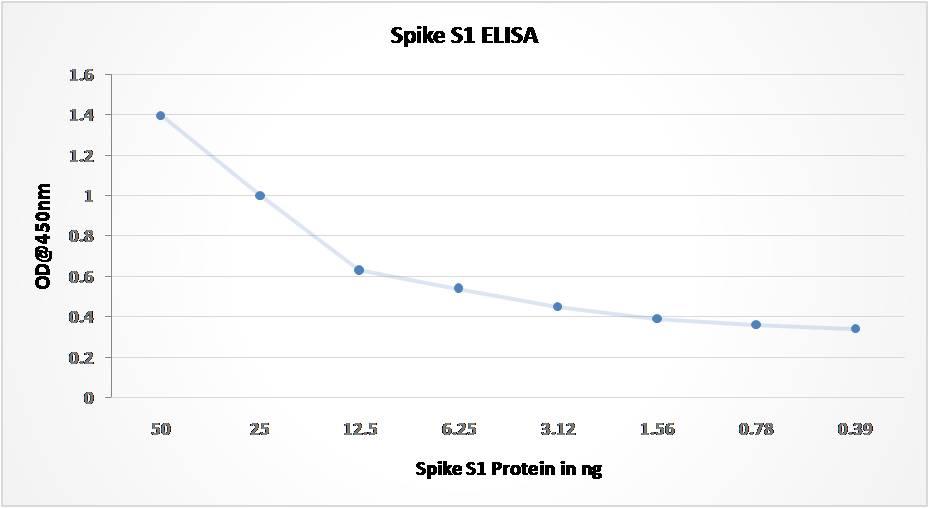 Anti SARS-CoV2 Spike RBD Antibody (Clone: ABM1H9.1E6)