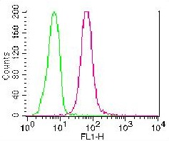 Monoclonal Antibody to Caspase-8 (Clone: ABM14C1) FITC Conjugated
