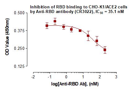 Recombinant Anti-SARS-CoV-2 Spike RBD antibody (CR3022)