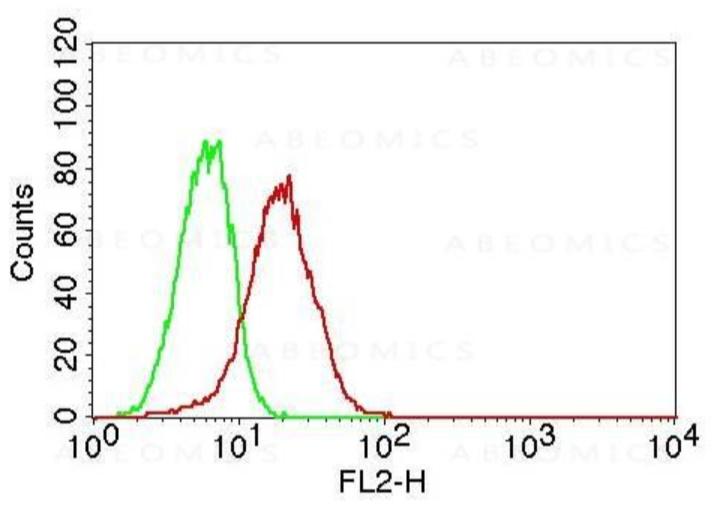 Monoclonal Antibody to TLR6 (Clone: ABM1B50)