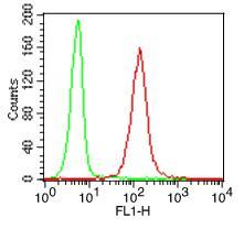 Monoclonal Antibody to TLR9 (Clone: ABM1C51) FITC conjugated