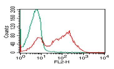 Monoclonal Antibody to TLR3 (Clone: ABM15D5)