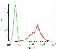 Monoclonal Antibody to TLR4 / CD284 (Clone: ABM19C4) FITC Conjugated