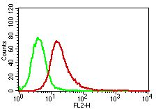 Monoclonal antibody to MyD88 (Clone: ABM2H20)