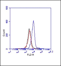 Monoclonal Antibody to MD-1 (Clone : MD113)