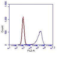 Monoclonal Antibody to Mouse CD14 (Clone :  Sa14-2)