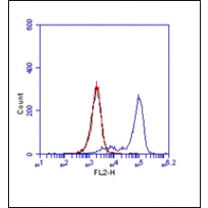 Monoclonal Antibody to Human/Mouse TLR2 (Clone : mT2.4)