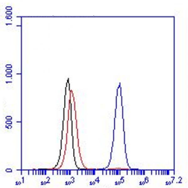 Monoclonal Antibody to human CD46