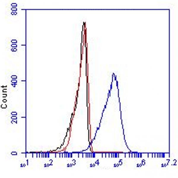 Monoclonal Antibody to human CD36