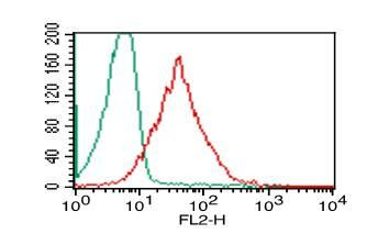 Fig-3: Intracellular flow analysis of HMGB1 in PBMC (Lymphocyte) using 0.5 µg/10^6 cells of HMGB1 antibody (Clone: ABM24D3). Green represents isotype control; red represents anti-HMGB1 antibody. Goat anti-mouse PE conjugate was used as secondary.