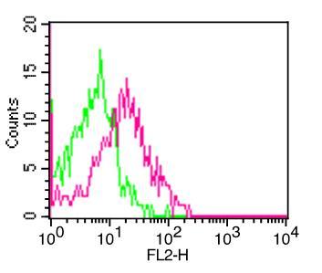 Monoclonal antibody to CD161 (clone: ABM27F5)