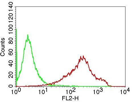 Monoclonal Antibody to hCD19 (Clone: CB19)