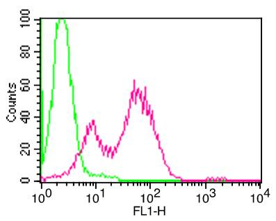 Monoclonal Antibody to Mouse CD25 (Clone: PC61)