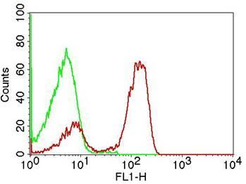 Monoclonal Antibody to CD3 (Clone: OKT3) FITC Conjugated