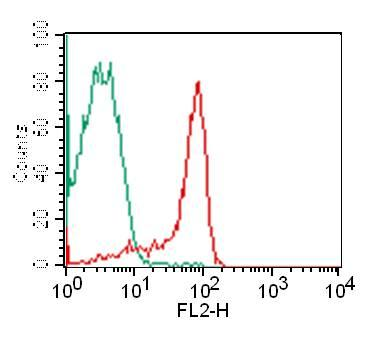Monoclonal Antibody to CD4 (Clone: RPA-T4)