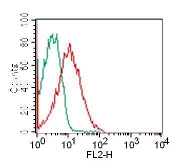 Monoclonal Antibody to CD8 (Clone: RPAT8)
