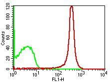 Monoclonal antibody to mCD4 (Clone: GK1.5) FITC Conjugated