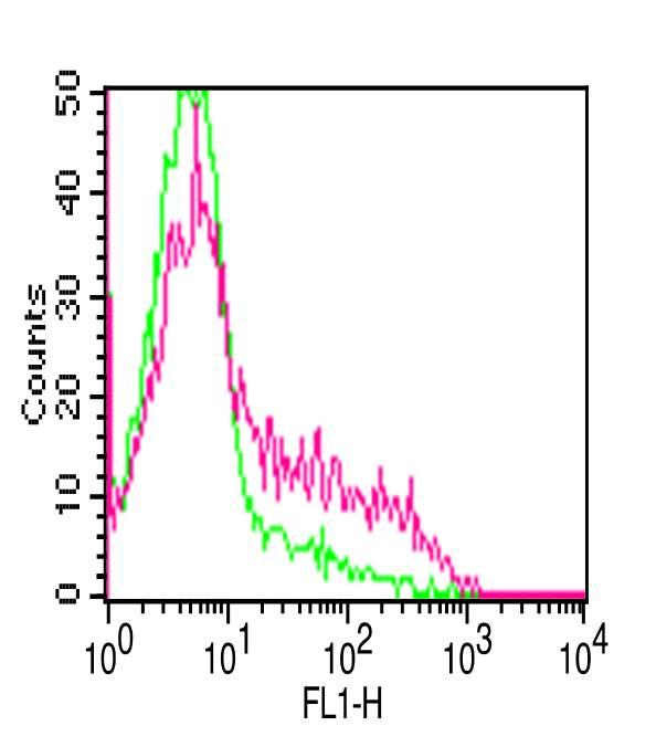 Monoclonal antibody to hCD25 (Clone: 7G7B6 )