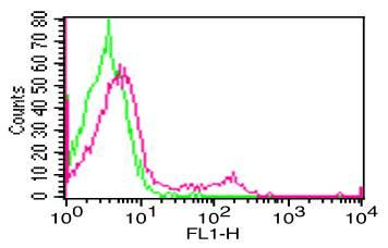 Monoclonal Antibody to hCD19  (Clone: SJ25C1)  FITC conjugated