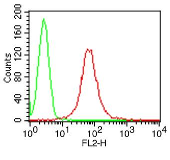 Fig-1: Cell Surface flow analysis of hCD1a  in Molt-4 cells using 1 µg/10^6 cells. Green represents isotype control (ABEOMICS); red represents anti-hCD1a  antibody (10-4133, clone:CBT6). Goat anti-mouse PE conjugated secondary antibody (ABEOMICS) was used.