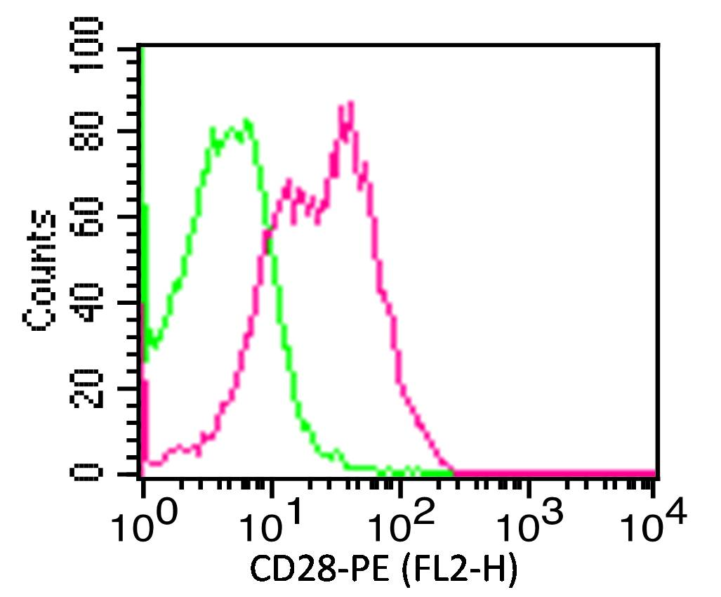 Figure-2: Cell surface Flow analysis  of CD28  in PBMC (lymphocytes gated) using 0.5 µg/ 10^6  cells. Green represents isotype control (ABEOMICS);red represents anti-hCD28 antibody (10-4137).  Goat anti-mouse PE conjugated secondary antibody (ABEOMICS) was used. (Cells were incubated with primary antibody for 30 min. then washed twice with FLOW Staining buffer (ABEOMICS) by centrifuging at 1100 rpm for 5 min, followed by 30 min incubation with conjugated secondary antibody. Data acquisition was done after washing twice with Staining buffer).